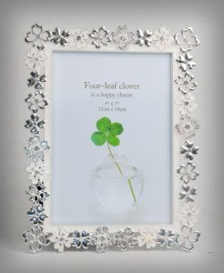 PF1085 - Enamaled Silver Plated Photo Frame with Flower Cutting Decorative Border 5x7